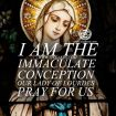 i-am-the-immaculate-conception-our-lady-of-lourdes-pray-for-us
